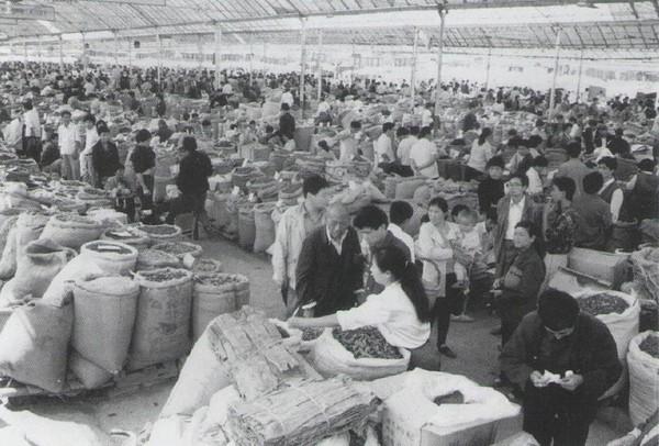 80年代建成的亳县中药材...