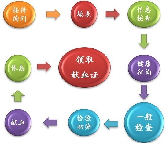 献血流程图.jpg