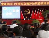 紫蓬镇年度应急培训