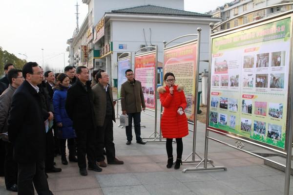 安徽省各地市分管组织部长、电教中心主任参观肥西县桃花镇顺和社区远教广场