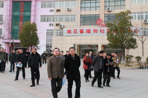 安徽省电教中心主任陈卫东参观肥西县桃花镇顺和社区远教广场