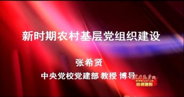 新时期农村基层党建工作建设 3