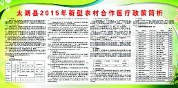 2015年新农合政...