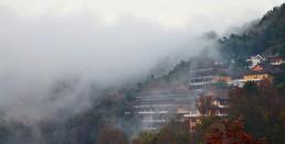 雾漫西风寺