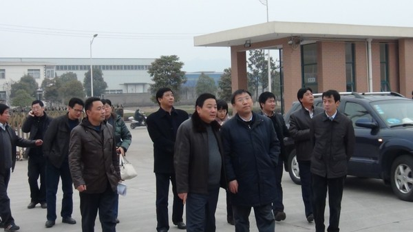 2商務部市場建設司副司長鄧立來我公司調研.JPG