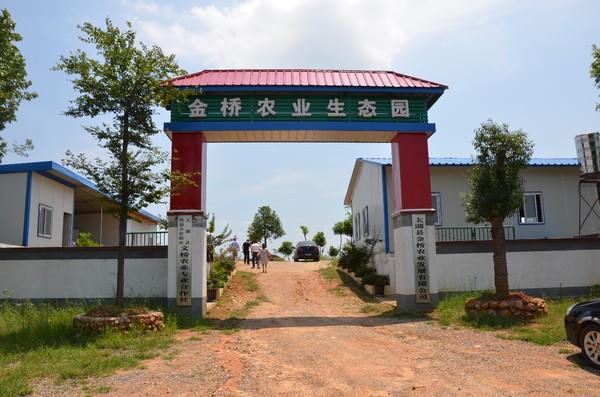 金桥农业生态园