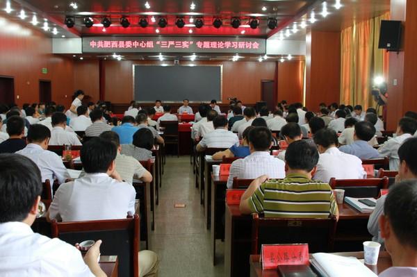"""肥西县委中心组""""三严三实""""专题理论学习研讨会"""