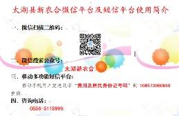 太湖县新农合微信平...