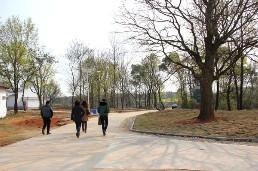 美丽乡村村间道路