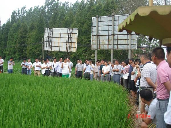 肥西县新型职业农民植保员培训班在三河镇举办 (1).JPG