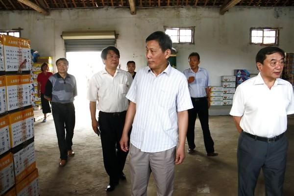 太湖县国家农产品质量安全县创建工作接受验收