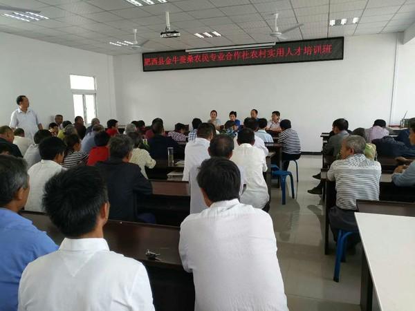 肥西县举办特色产业基地蚕桑产业农村实用人才培训班.jpg