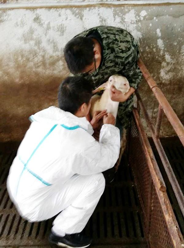 江塘乡从源头抓农产品质量安全