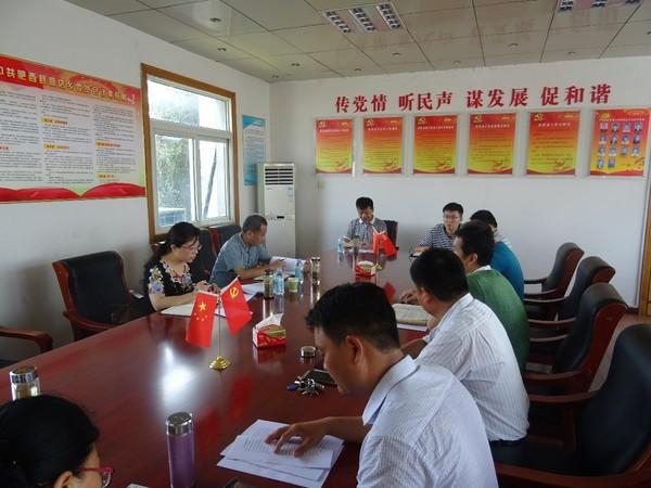 县委常委、组织部长、统战部长宣丽玲督查指导高店乡党建工作