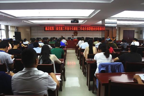 桃花镇召开第三批党建工作指导员派驻工作动员部署暨业务培训会