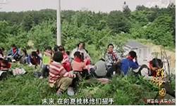 《辉煌中国》 第五集 共享小康