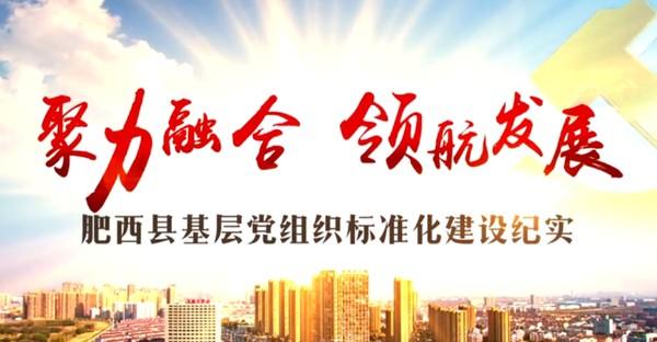 肥西县基层党组织标准化建设纪实