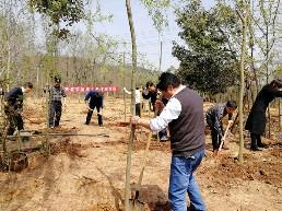 县安监局到共建村开展义务植树活动