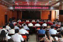 """肥西县""""四个分步""""高质量推进非公党建""""两个摸排""""工作"""