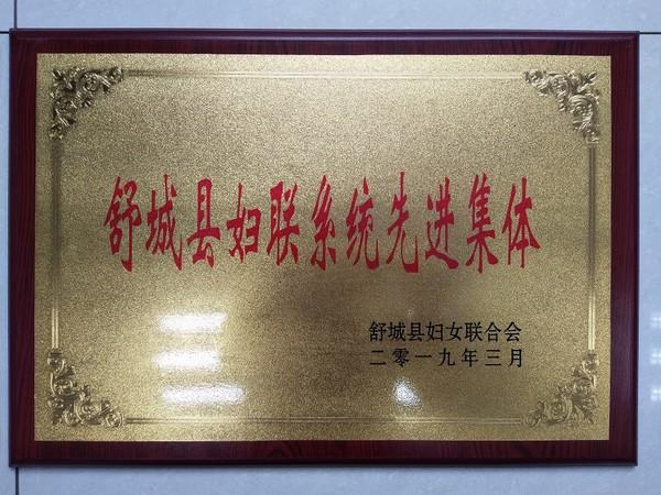 院妇委会荣获2018年度县妇联系统先进集体