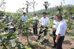 县领导到柿树岗乡怡果产业园 调研现代农业发展