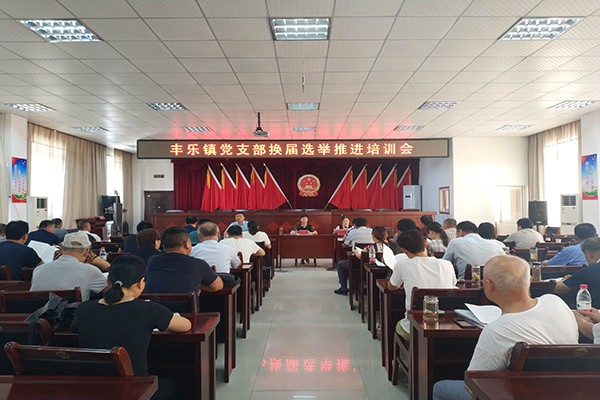丰乐镇全面推进党支部换届选举工作