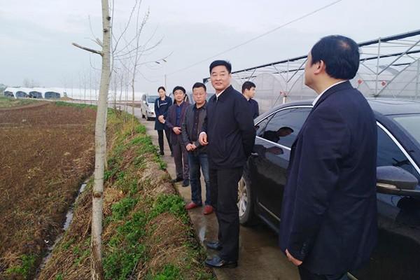 肥西县委书记金成俊赴官亭镇调研脱贫攻坚工作