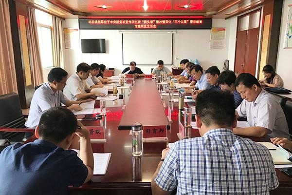 王旻指导丰乐镇专题民主生活会