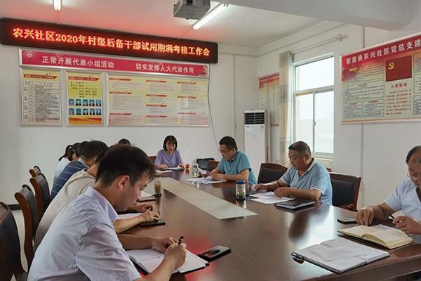 紫蓬镇开展2020年新入职后备干部试用期满考核工作