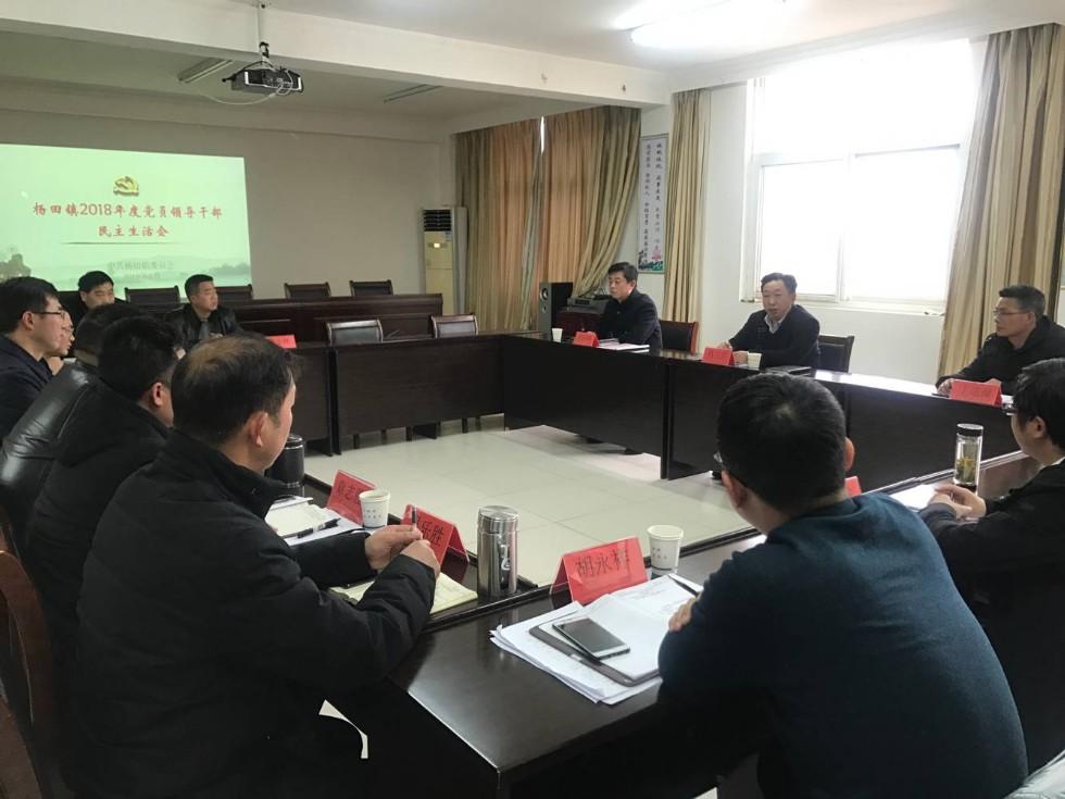 杨田镇召开2018年度民主生活会.png